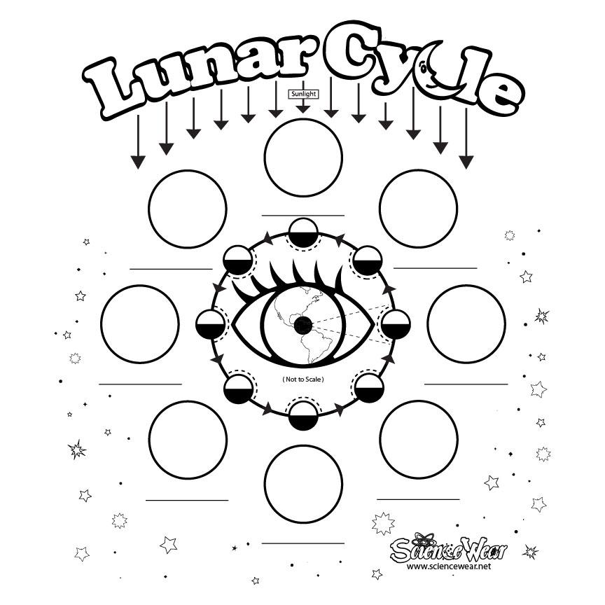 Lunar Cycle Before